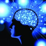 Four Human Brain Functions That Effect Your Life