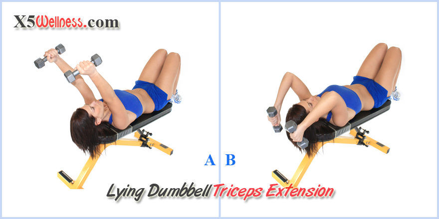 Seated dumbbell tricep extension