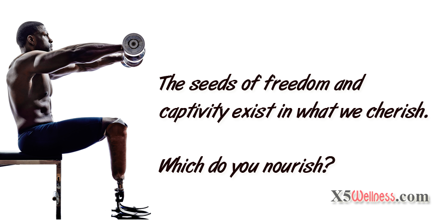 freedom-captivity